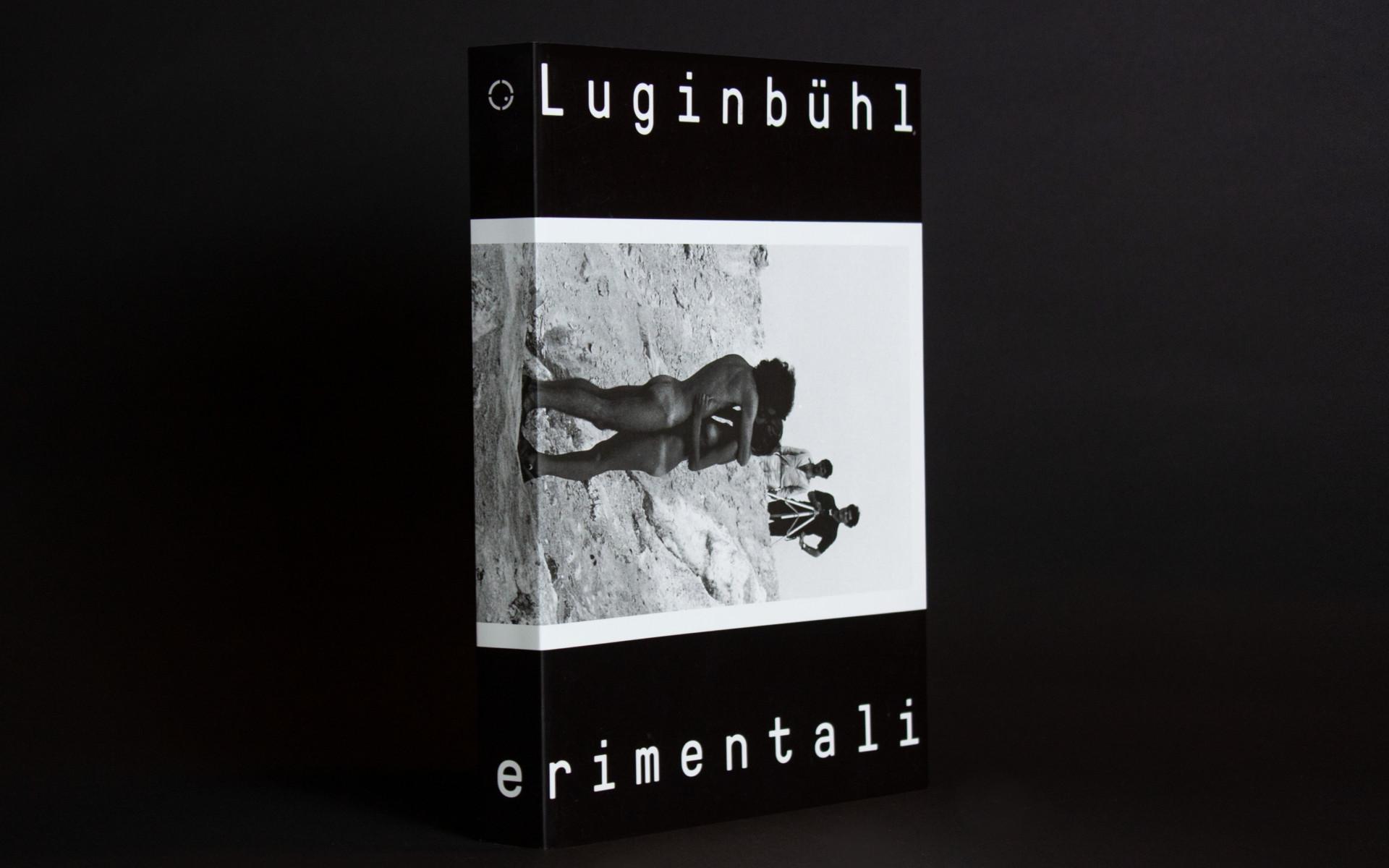 RICCARDO PIROTTO Luginbühl catalogue